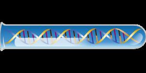 genetic-test-1476825_960_720