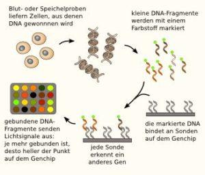 dna-genchip_microarray_gentest